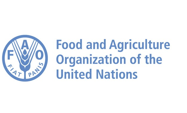Food and Agriculture Organization (FAO) logo - Official website