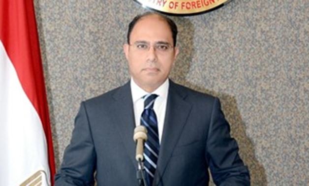 Foreign Ministry's spokesman Ahmed Abu Zaid - File Photo