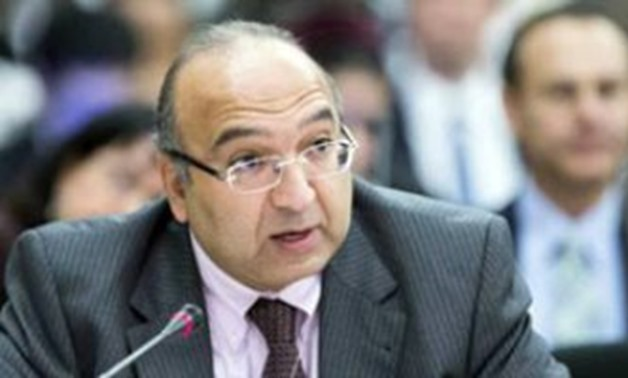 UN and deputy head of the United Nations Human Rights Council (UNHRC) Amr Ramadan - File Photo