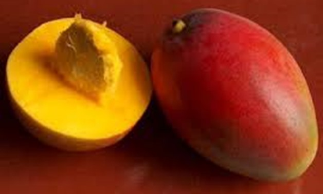Photo of different types of mangoes - File photo