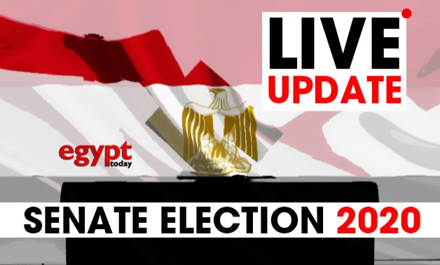 Voters in Senate Elections 2020 - Egypt Today