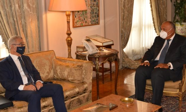 Egyptian Foreign Minister Sameh Shoukry and his Maltese counterpart Evarist Bartolo - press photo