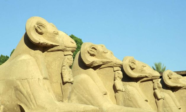 Some of the Ram statues located in the Karnak Temples in Luxor - The National