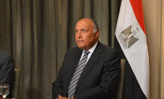 Sameh Shoukry, the Foreign Minister, at a conference held in July 2020- press photo