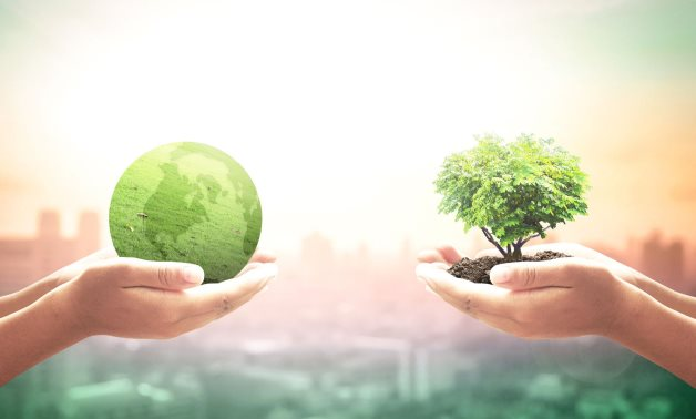 Green investment – Wikimedia Commons