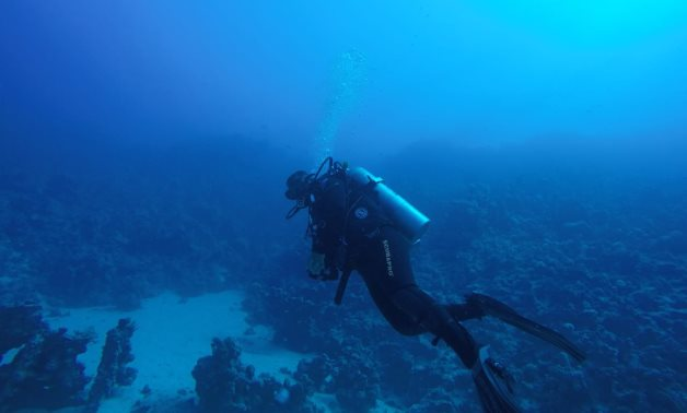 Bow of sunken 18th century ship found in Egypt's Red Sea