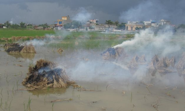 Air pollution from open burning of straw nearby residential area in Vietnam – Imaggeo/Ali Mohammadi