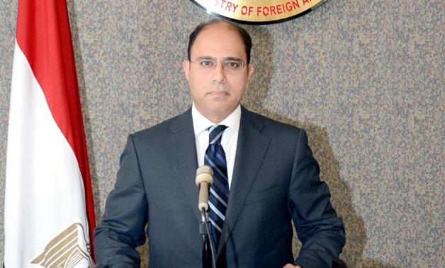 Foreign Ministry's spokesperson Ahmed Abou-Zaid - File Photo