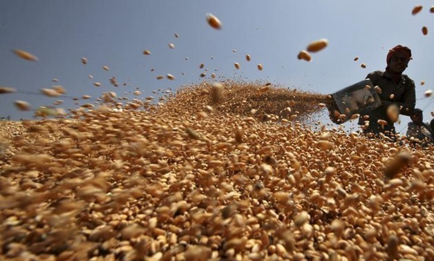 Wheat- Reuters