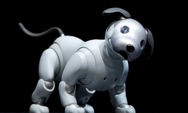 """Sony Corp's entertainment robot """"aibo"""" is pictured at a news conference in Tokyo, Japan November 1, 2017. REUTERS/Kim Kyung-Hoon"""