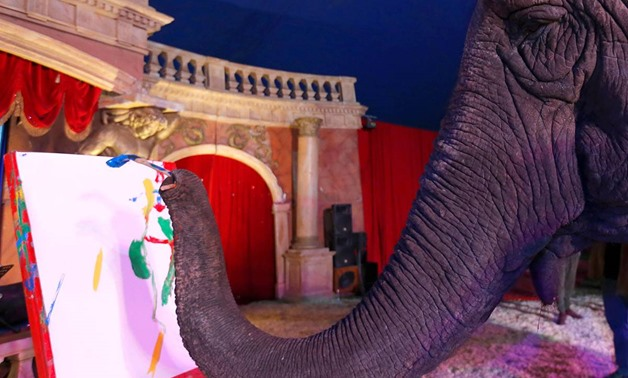Sandra, a 42-year-old elephant, paints with her trunk in a Hungarian travelling circus of Florian Richter Circus in Budapest, Hungary November 2, 2017. Picture taken November 2, 2017. REUTERS/Laszlo Balogh