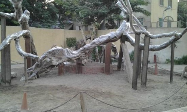 Virgin's Tree in Matariya, Northern Cairo – Trip Advisor