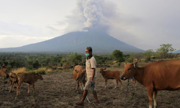 A farmer walks with his cattle as Mount Agung volcano erupts in the background in Karangasem, Bali, Indonesia November 28, 2017 - REUTERS/Johannes P. Christo