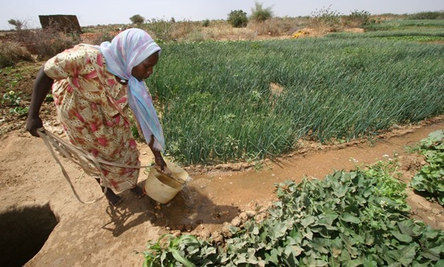A woman irrigates crops in Kabkabiya camp in North Darfur – Wikimedia Commons