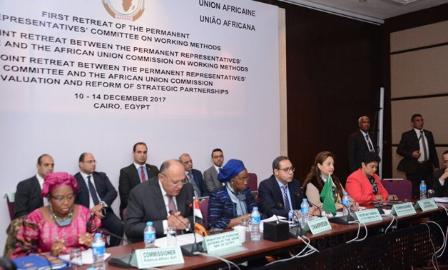 Egypt supports reforms in the African Union: FM