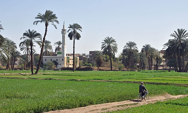 The Egyptian countryside - Wikimedia Commons