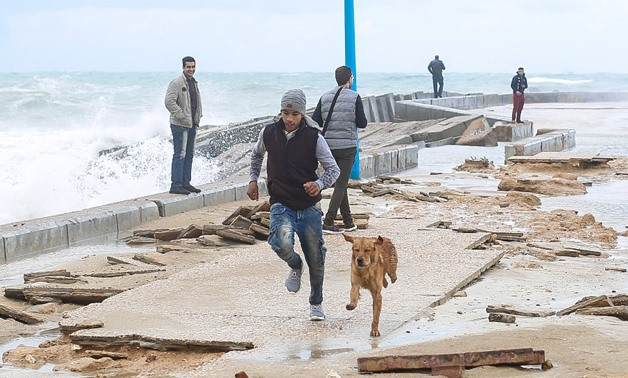 The bad weather and rainfall wave continues in Egypt's cities for the second day, Alexandria governorate, Jan. 26, 2018 -  Egypt Today/Kariem abdel Aziz