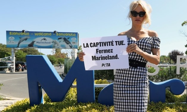 US actress Pamela Anderson chose the Marineland complex in southern France for a protest last August against keeping dolphins and killer whales captive. Her placard reads: 'Captivity kills, shut down Marineland'