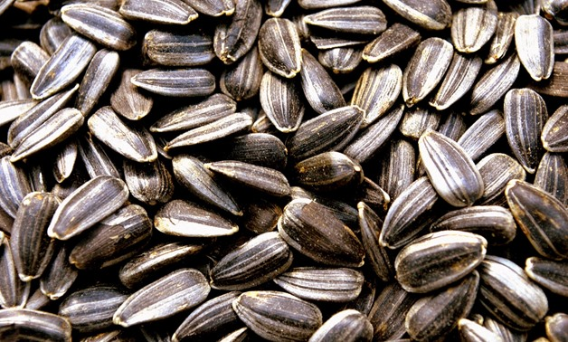 Sunflower seeds are a good source of vitamin B5. Via CC/Public Domain Pictures.