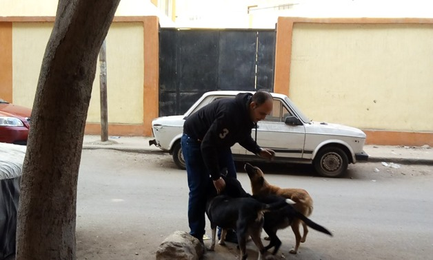 An Egyptian playing with stray dogs – Egypt Today/Hend Safwat