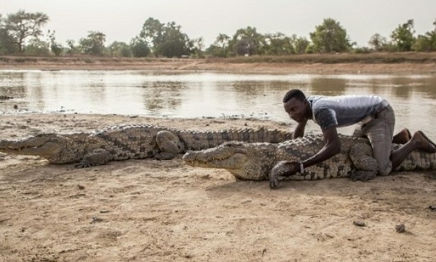People in Bazoule also share their pond with more than 100 of the razor toothed creatures. PHOTO: AFP