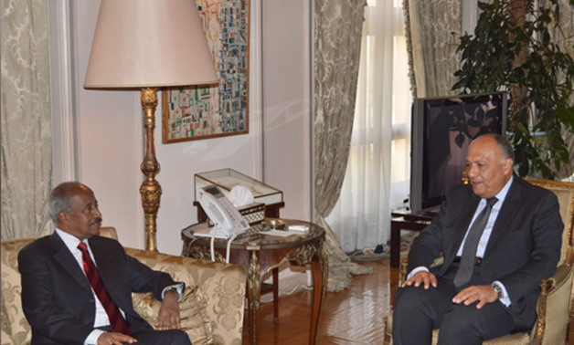 Egyptian Foreign Minister Sameh Shoukry and Eritrean Foreign Minister Othman Saleh - Press Photo