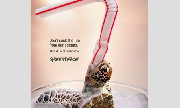 Negative effect of plastic on sea creatures. - Photo Courtesy of Plastic Free Turtles Official Facebook Page