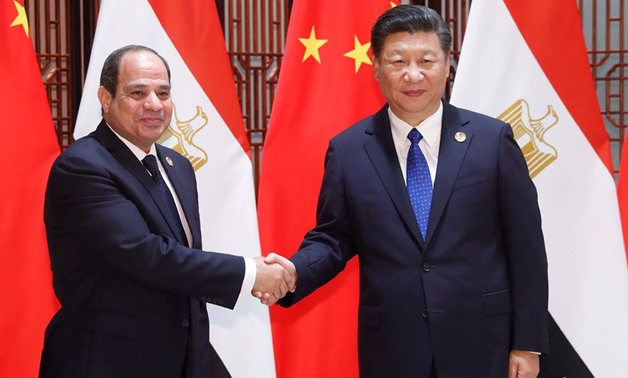 Egypt is a dear friend, good partner: Chinese amb. to Egypt