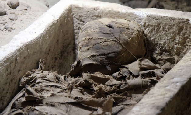 Egyptian archaeologists discovered catacombs including 18 mummies in south of Cairo – Photo by Hossam Atef (2)