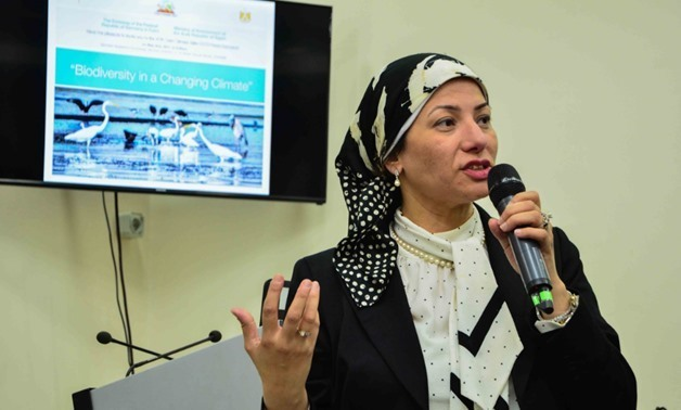 Environment Minister Yasmine Fouad during a Cairo Climate Talks event on May 2, 2017 -