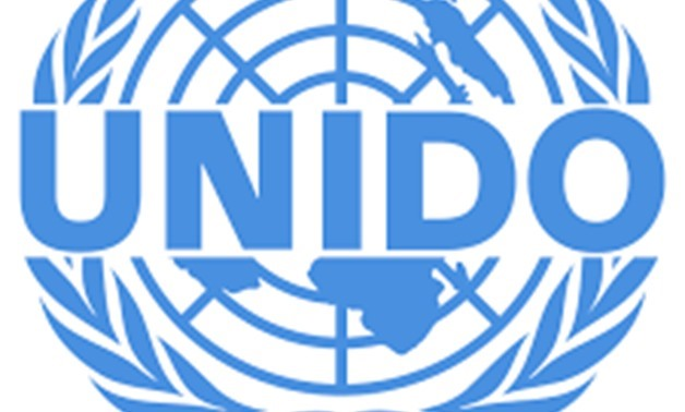 UNIDO director hails investment climate in Egypt