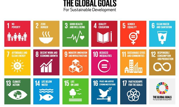 The Global Goals for Sustainable Development SDGs - Photo Courtesy of WHO official website
