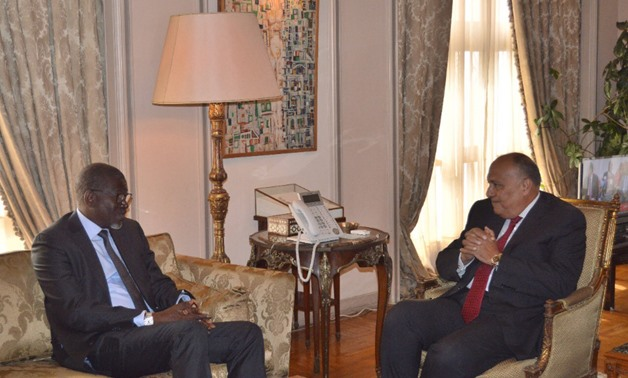 Egypt affirms caring for Africa's humanitarian issues