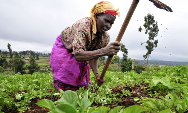 Food security/ CC via Wikipedia/ 2DU Kenya 86