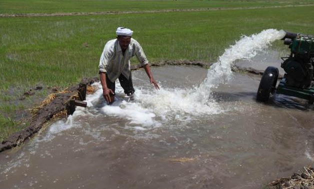 An Egyptian farmer irrigates his land - REUTERS