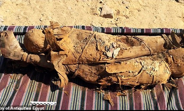 File-uncovered mummies