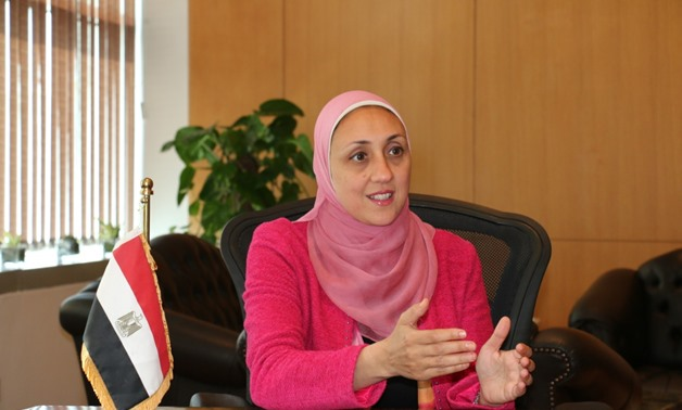 Hala El Gohary was appointed as the CEO of the Information Technology Industry Development Agency (ITIDA).- press photo