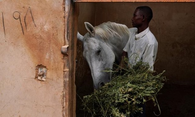 A worker feeds a horse at a private stable at the Equestrian Club, in Khartoum, Sudan, June 27, 2019. The club has had to cut back activities since popular unrest erupted in December and led to the fall of autocratic President Omar al-Bashir in April. REU