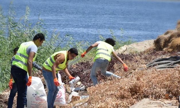 Youth Love Egypt Foundation's members cleaning Aswan's shores during an event organized in Mövenpick Resort- Press Photo