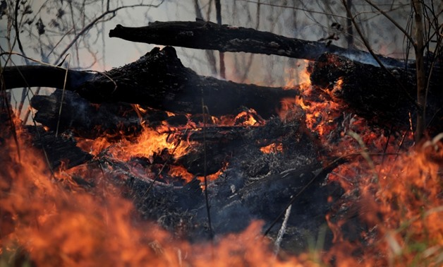 A tract of the Amazon jungle burns as it is cleared by loggers and farmers in Porto Velho, Brazil August 24, 2019. REUTERS/Ueslei Marcelino