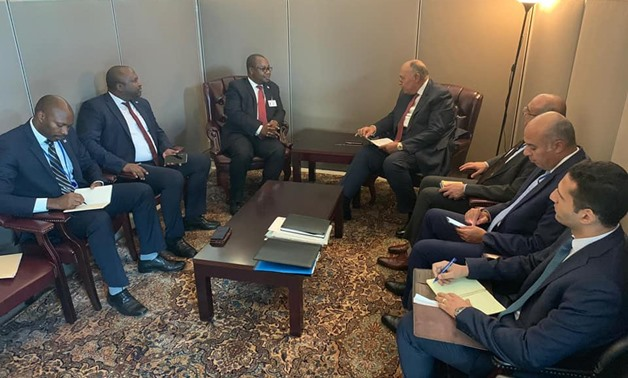 Egyptian Foreign Minister Sameh Shoukri on Saturday met separately with the foreign ministers of South Sudan and Burundi - Press photo