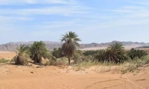 FILE: The Valley of Maliha, 55km north of Hurgada, Red Sea