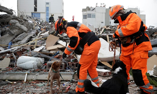 Rescue workers with dogs work on a collapsed building in Durres, after an earthquake shook Albania, November 29, 2019. REUTERS/Florion Goga