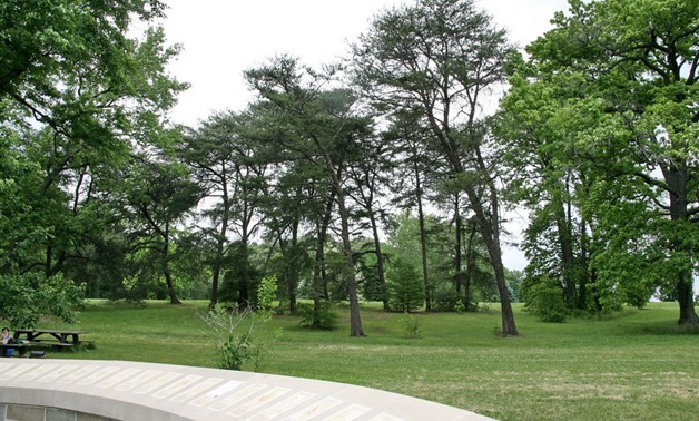 National Grove of State Trees- CC via Flickr/Cliff