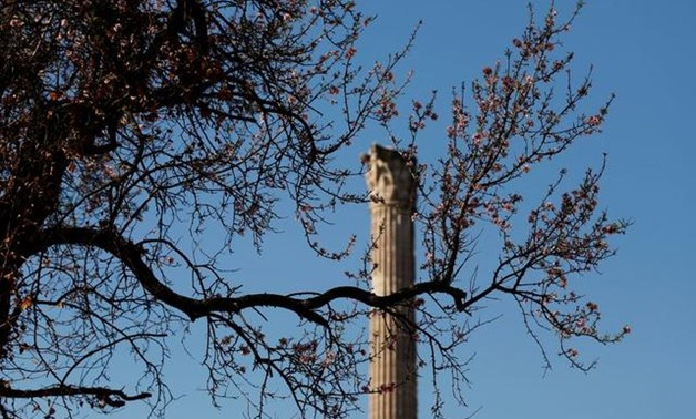 An ancient column is seen in the Roman Forum in Rome, Italy February 21, 2020. REUTERS/Yara Nardi