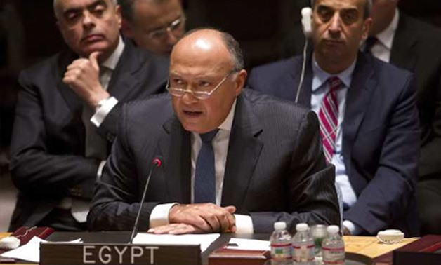 Egypt's Foreign Minster Sameh Shoukry at the UN Security Council - Reuters