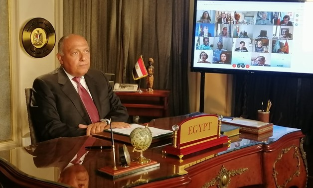 Egyptian Foreign Minister Sameh Shoukry attends the virtual meeting by United Nations Security Council on the GERD on June 29, 2020- Press photo