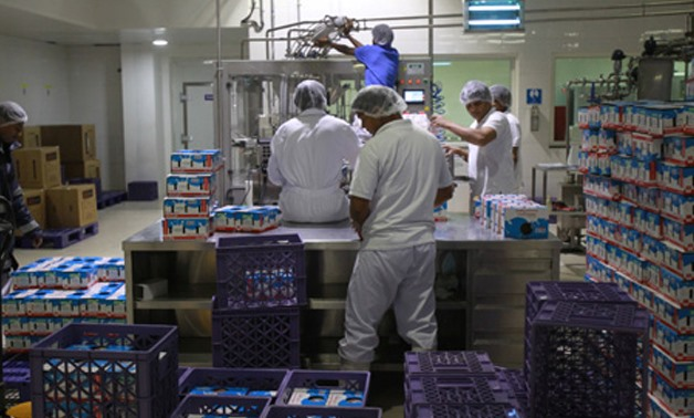 Workers work in a dairy factory in Doha, Qatar - REUTERS
