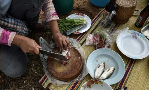 This photograph taken on May 20, 2017 shows a farmer chopping fresh fish for lunch in the northeastern Thai province of Khon Kaen. Millions of Thais across the rural northeast regularly eat koi pla — a local dish made of raw fish ground with spices and li