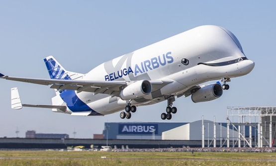 The Airbus BelugaXL, built to transport large aircraft pieces, took off on its first flight Thursday from France's Toulouse-Blagnac Airport.